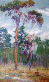 Bierce, Harry. Tampa. Lupine Time, Tampa. Exhibited Student Art Club, Tampa Public Library, May 1922. Oil on canvas, 16 and one quarter by 26 inches.
