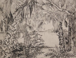 Hill, Polly Knipp. Pametto Jungle. Etching, 7 by 9 inches. 60 of 67.