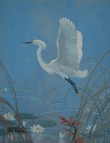 Postel, Joy. Little Snowy Egret and Wild Hibiscus. Oil on board, 14 by 18 inches.