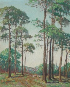 Redfield, Mary B. Clearwater. Florida Pines. Oil on board, 16 by 20 inches.