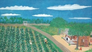 Smith, Frog. Ft. Myers. Cotton Field. Oil on board, 14 by 24 inches.